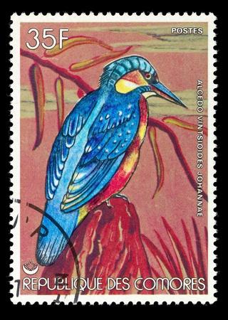comores: COMORES - CIRCA 1986: Postage stamp printed in Comores, shows a bird the alcedo vintsiodes johannae, circa 1986 Stock Photo