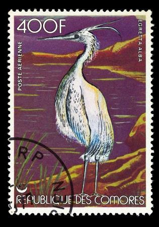comores: COMORES - CIRCA 1986: Postage stamp printed in Comores, shows a bird the egretta alba, circa 1986 Stock Photo