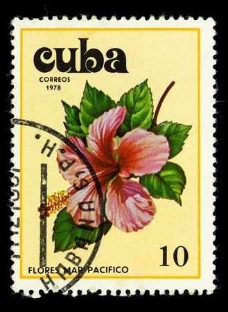pacifist: CUBA - CIRCA 1978: a stamp printed in Cuba shows image Tues flowers pacifist, series, circa 1978 Stock Photo