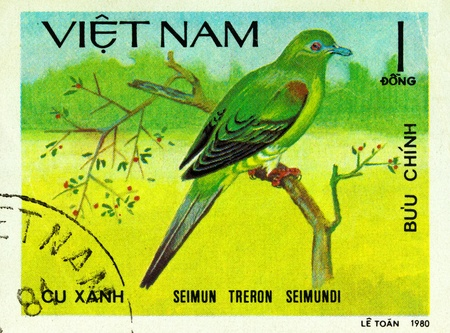 VIETNAM - CIRCA 1980: A stamp printed in Vietnam shows Yellow-vented green pigeon or Seimun treron seimundi, series devoted to the birds, circa 1980 photo