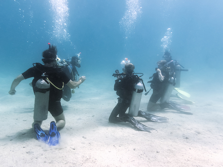 ダイバーの訓練のグループ。紅海。エジプト 写真素材