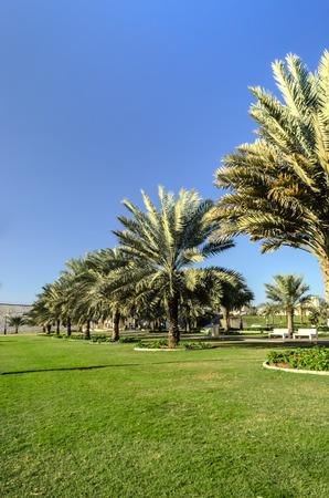 sharjah: Khalid Lake Trail Sharjah UAE