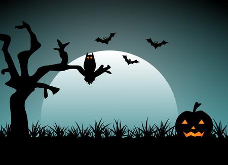 night: Halloween night