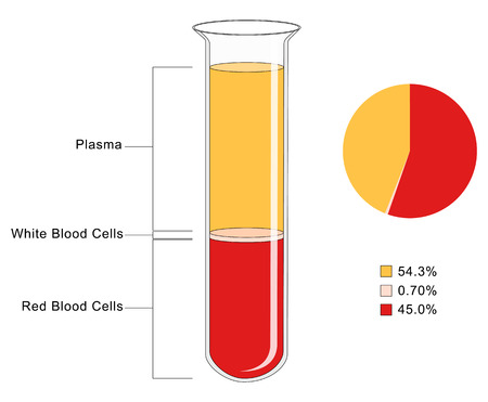 Bloed Samenstelling