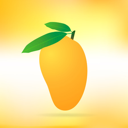 mango leaf: Ripened Mango illustration Stock Photo