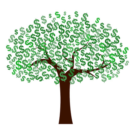 money tree: Dollars Tree Stock Photo