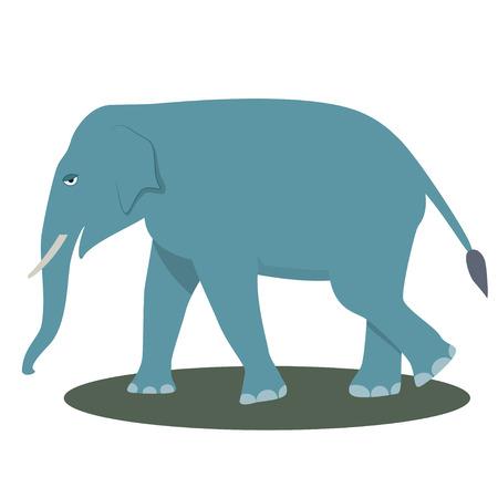 elephant cartoon: Elephant Cartoon