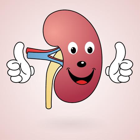 Healthy Cartoon Kidney Banque d'images
