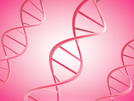 dna strands: 3d pink DNA strands