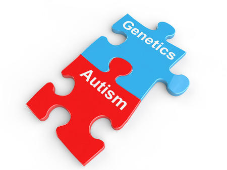 developmental: Autism and genetics puzzle link Stock Photo