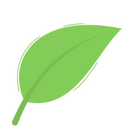 Green leaf isolated on white background Ilustração