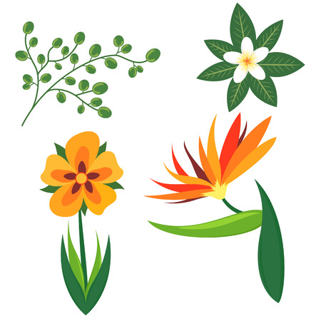Set of tropical flowers and leaves Ilustração