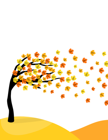 Autumn maple tree with colorful leaves in the wind