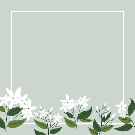 Jasmin Blumen Karten- und Bannerdesign Vektorgrafik