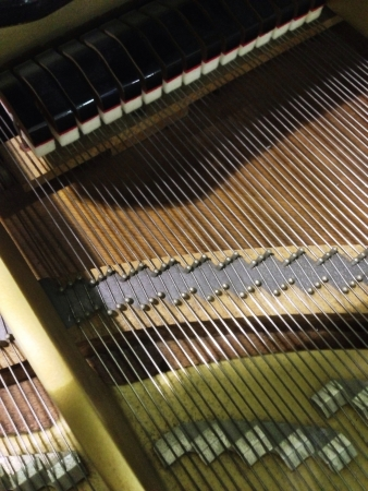 insides: Insides of a grand piano