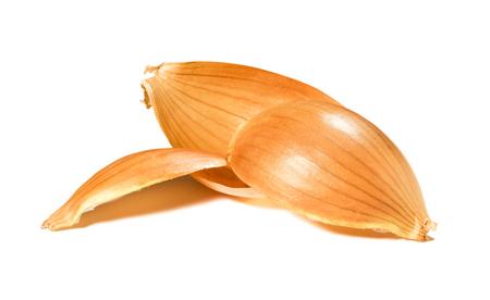 Husks of onion on a white background. 版權商用圖片