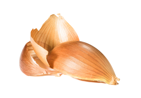 Husks of onion on a white background. Imagens