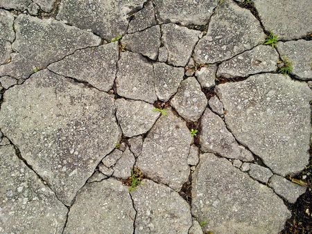 topdown: Top-down view of cracked concrete