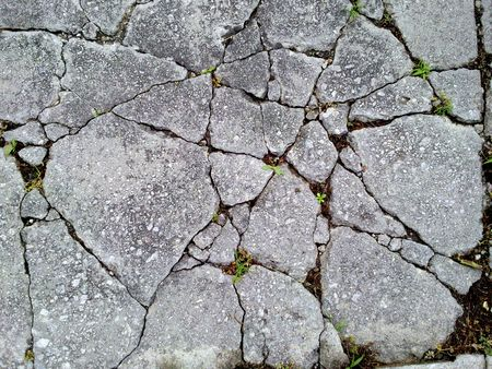 fragmented: Old, cracked concrete ground.