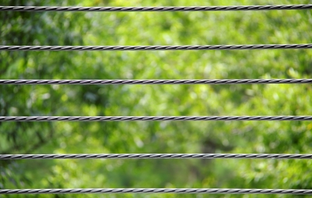 Parallel, horizontal, braided metal wires against a green, nature background. Banco de Imagens