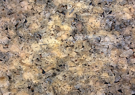 Close-up picture of a cork board pattern texture.