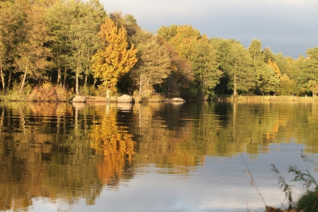 Autumn trees reflecting off the water photo
