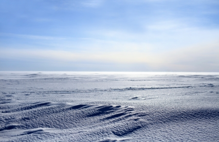 tundra: frozen sea looking like white snowy desert