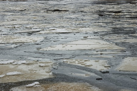 ice floes: Ice floes how shards of broken mirror