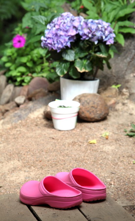 clogs: pink clogs for work and leisure in garden Stock Photo
