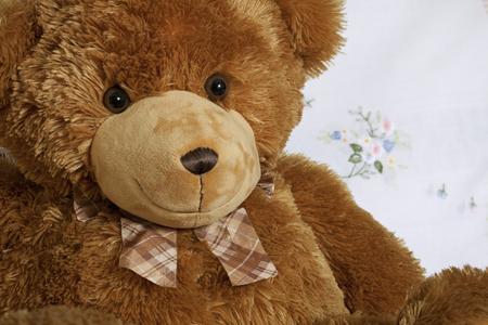 endear: portrait cute teddy bear, brown teddy-bear, friend smile toy