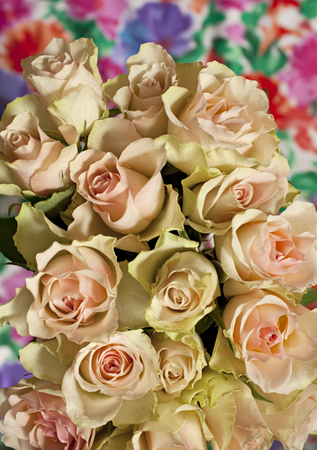 Flowers roses beautiful bouquet, background overhead shot Stock Photo