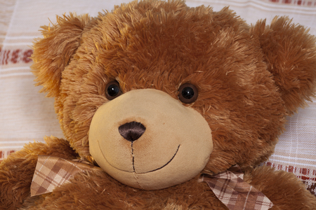 endear: Kind teddy bear plush friend, cute toy Stock Photo