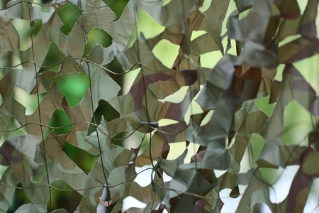 concealment: military camouflage net background Stock Photo