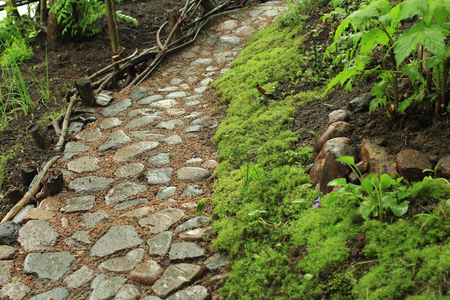 Old cobblestone footpath in the garden