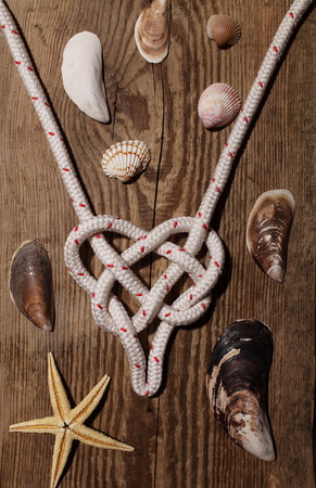 sea knot heart, seashell, love and marine adventure