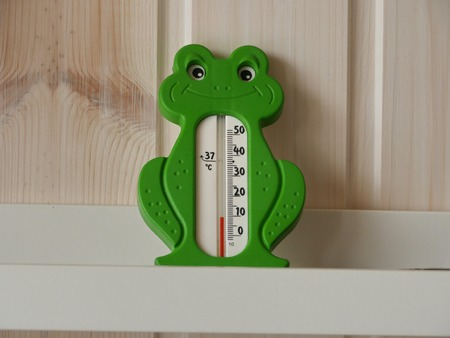 thermometer in the shape of a green frog