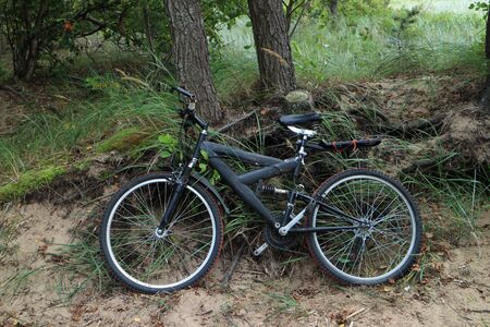 bike near a tree in the forest, bicycle travel, bike in the foreground