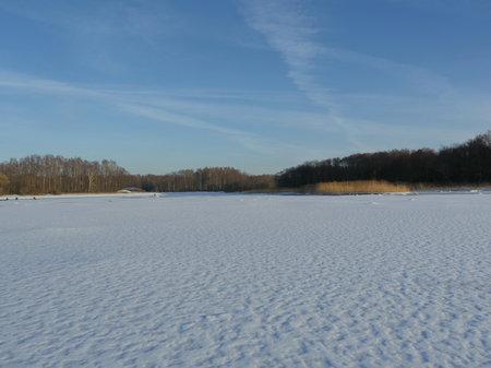 frozen lake clean flat snow forest on the horizon, winter landscape