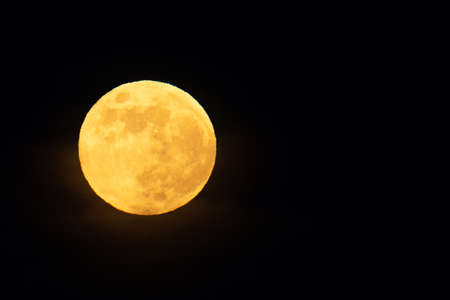 A Full moon on the sky yellow.