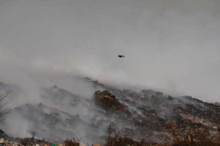 A burning garbage dump. smoke from a burning pile of garbage.