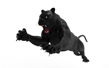 Negro pantera aislar sobre fondo blanco, Negro tigre, 3d ilustración, 3d Foto de archivo - 78012711