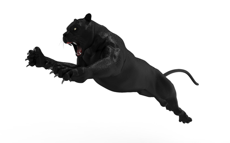 Black panther isolate on white background, Black tiger, 3d Illustration, 3d render Standard-Bild