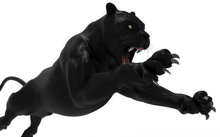 Isolato pantera nera su sfondo bianco, tigre nera, 3d illustrazione, 3d rendering Archivio Fotografico - 78009323