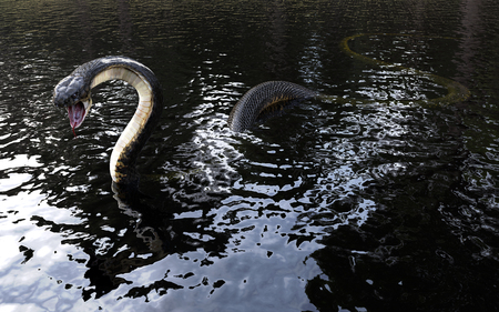 3d King cobra snake on water, The worlds longest venomous snake isolated on water,3d illustration, 3d Rendering