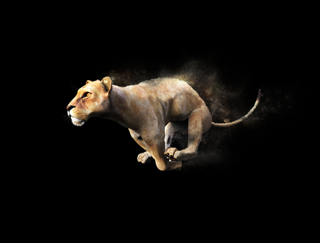ferocious: A female lion moving and running with dust particle effect on black background, 3d illustration Stock Photo