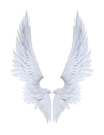 3d 그림 천사 날개, 흰색 날개 깃털 클리핑 패스와 함께 흰색 배경에 고립.