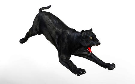 Black panther isolate on white background, Black tiger, 3d Illustration, 3d render Stock Photo