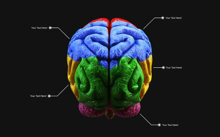 Medically 3d illustration of the human brain in side view isolated on black background