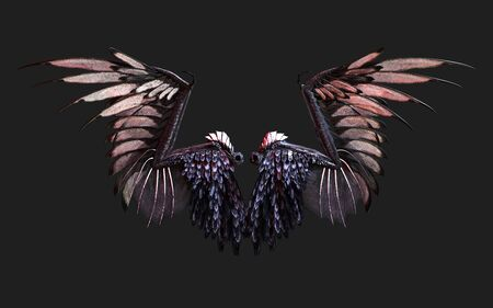 3d Illustration Demon Wings, Black Wing Plumage Isolated on Black Background