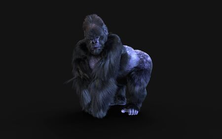 3d Illustration  a silverback gorilla on dark background   . Reklamní fotografie